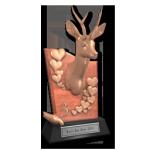 valentine_2014_trophy_deer_03