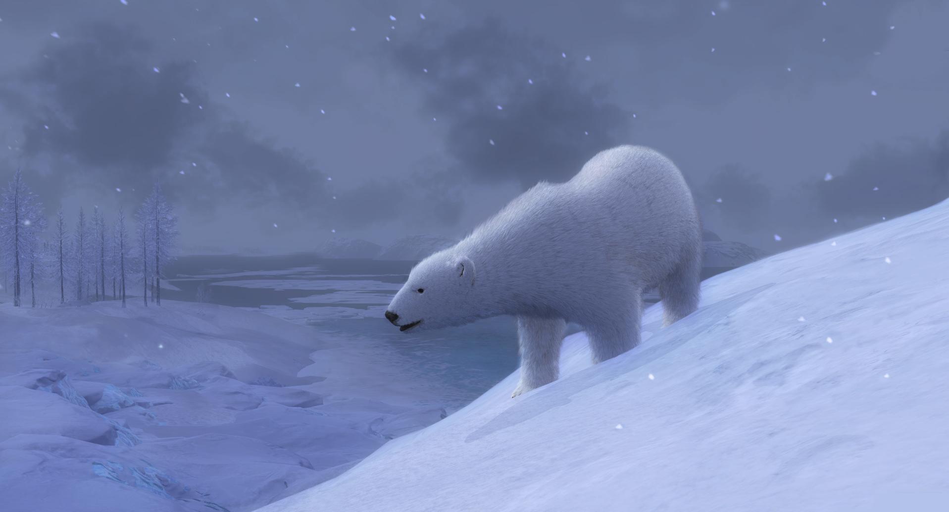 The Hunter - Page 2 Polar_bear_03