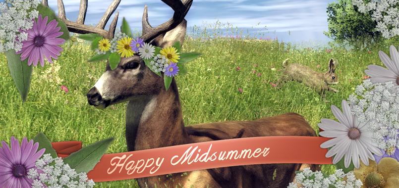 2014_happy_midsummer