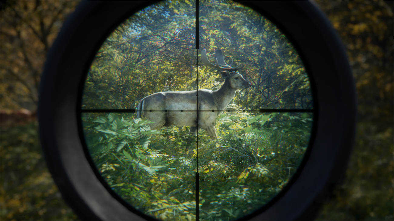 The Hunter : Call of the wild TheHunter_cotw_fallow_deer