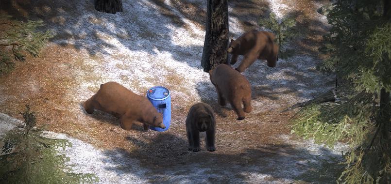 Revisión del Sistema de Cebaderos Brown_bears_1