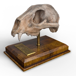 bobcat_mission_trophy