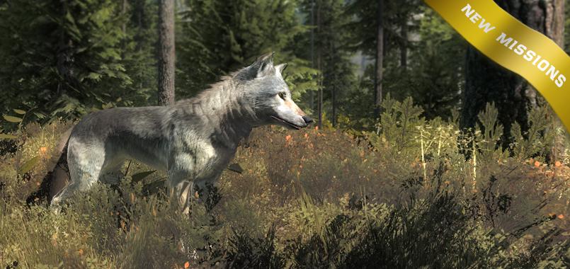 splashscreen_wolfmissions