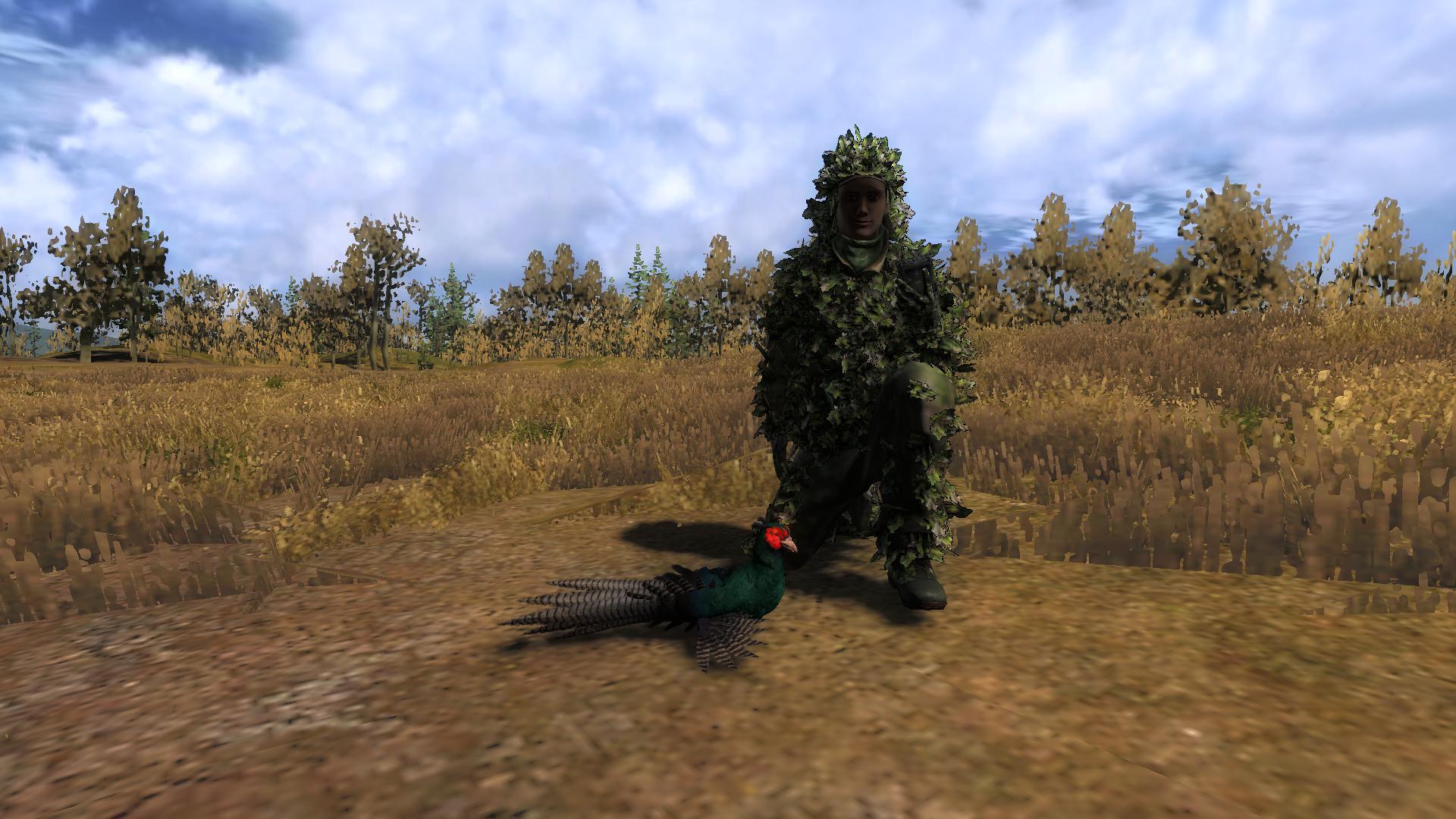 Rare pheasant