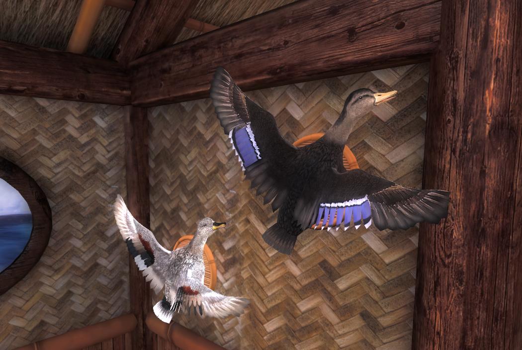birdpose_01