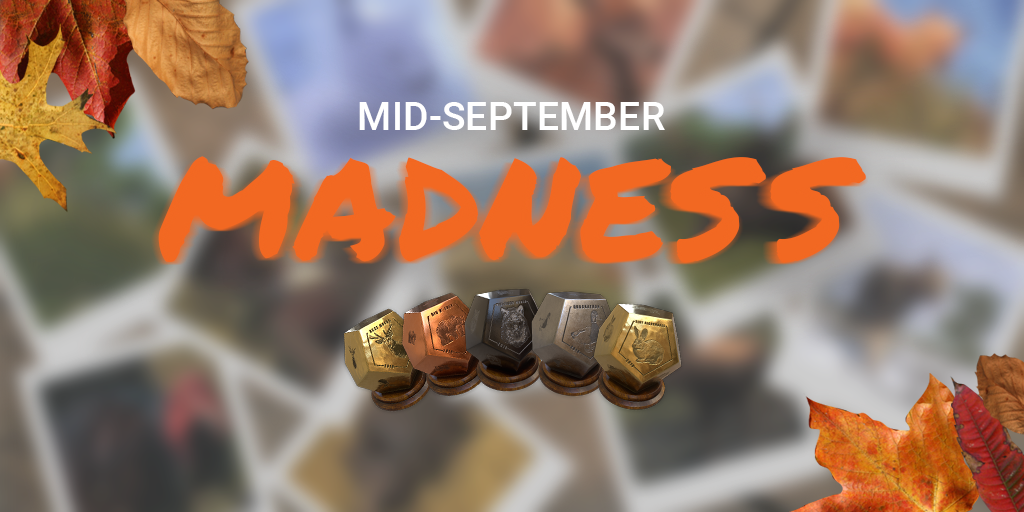 THC_mid_sept_madness_announce_fb_4