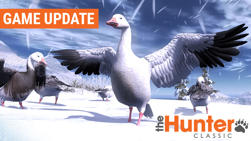THC_game_updates_snow_goose