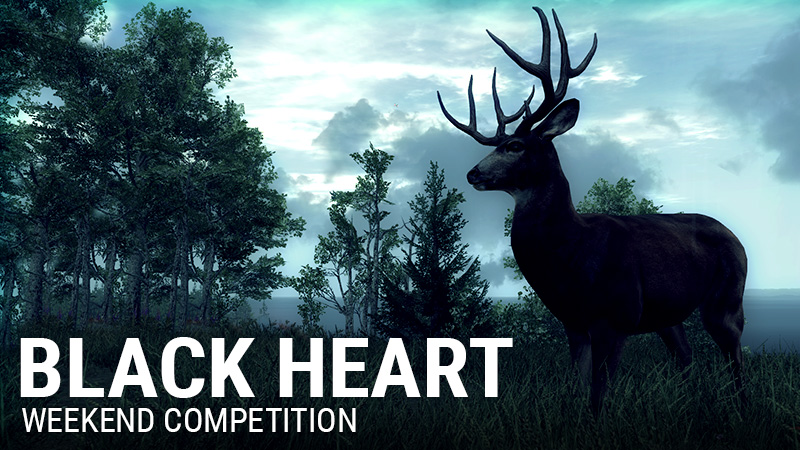 black_heart_banner_800x450