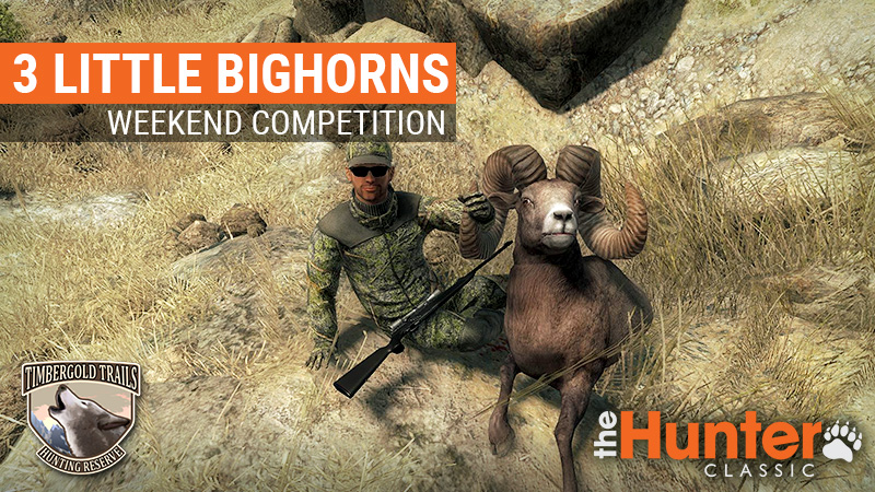 3_little_bighorns_800x450