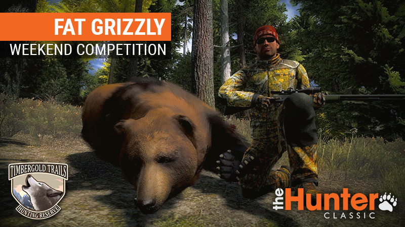 Fat_Grizzly_800x450