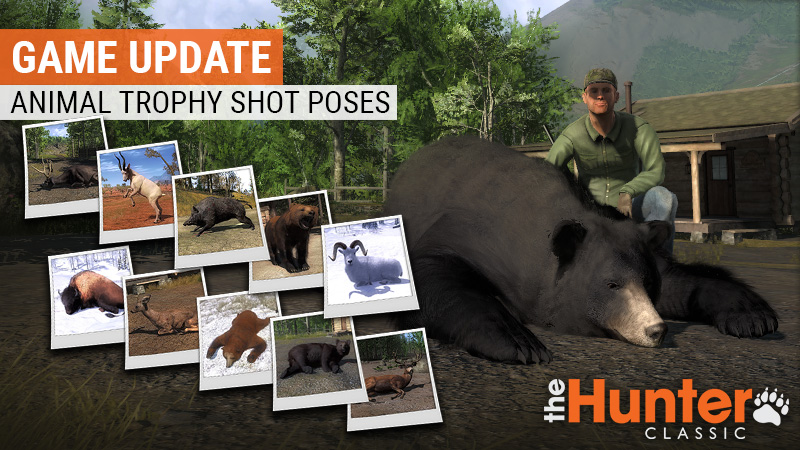 animal_poses_2_game_updates_800x450