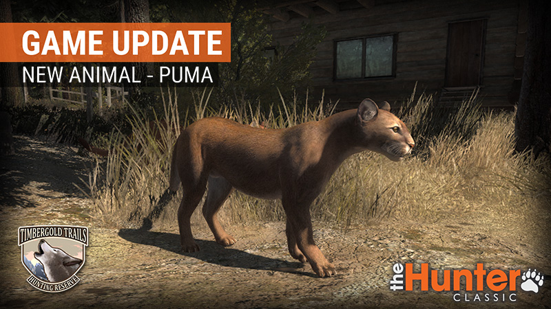 puma_game_update_steam