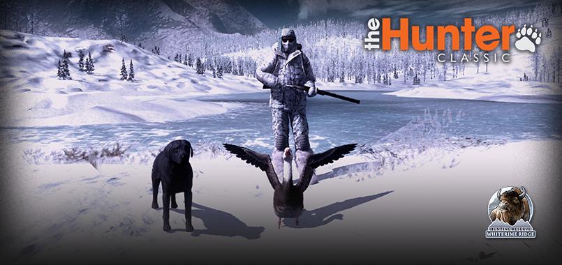 4_birds_homepage