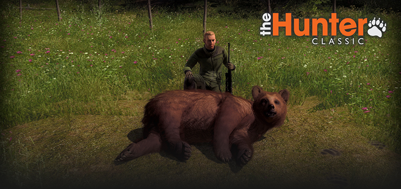 three_bears_homepage